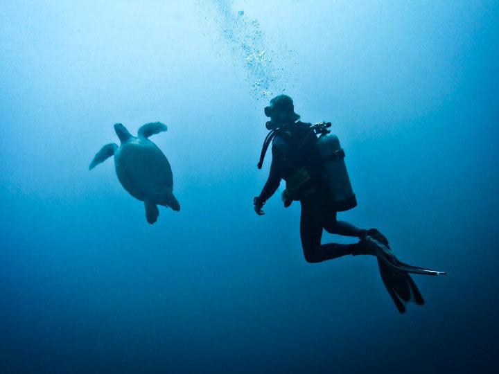 Gili-diving